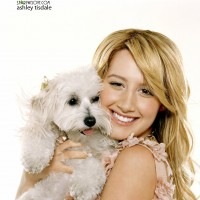 ashley_tisdale016