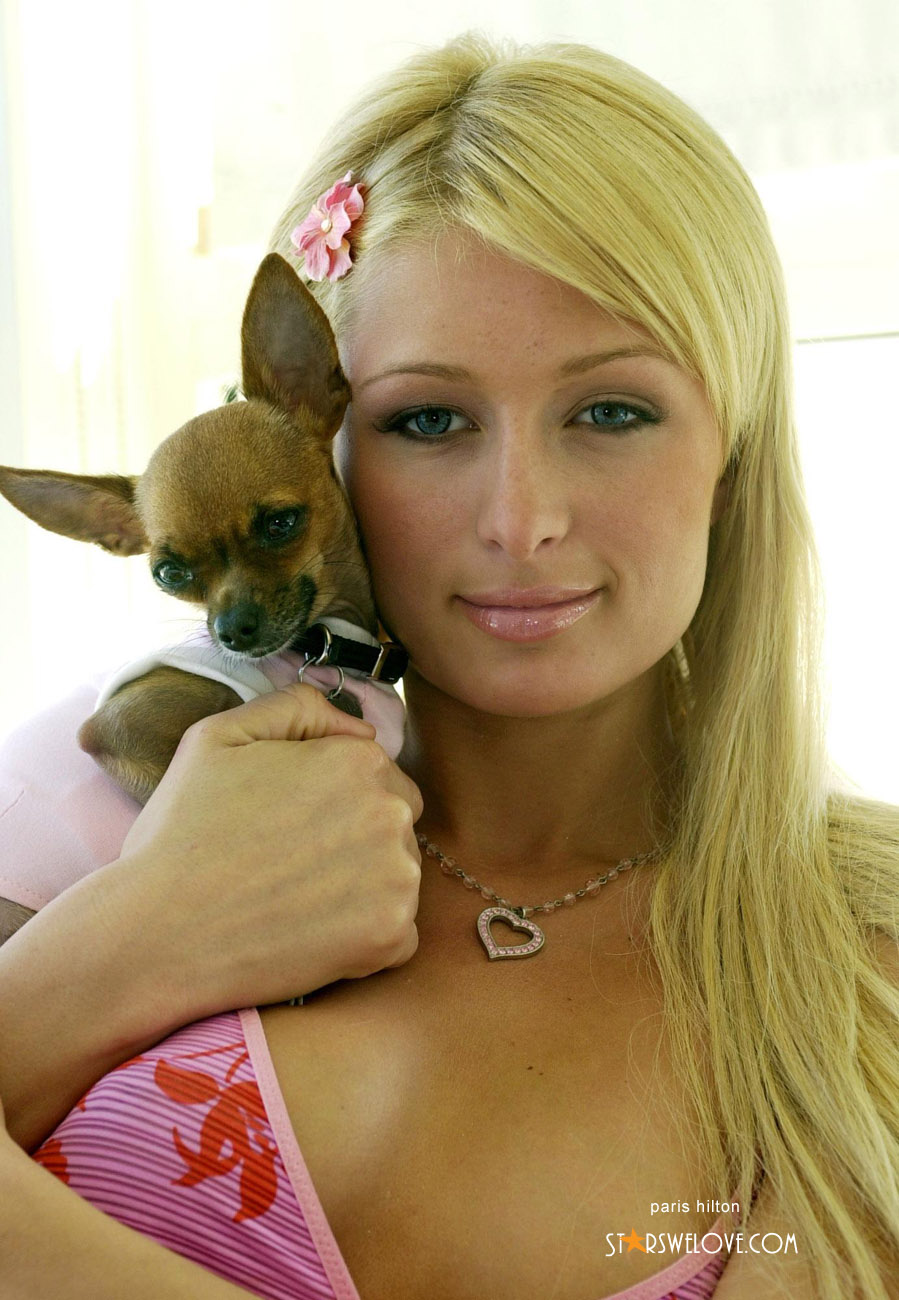 Paris Hilton photo (paris_hilton053, 899 x 1300 pixels, 235 kB)